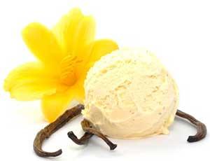 Selbst hergestelltes Vanille- Rahmeis